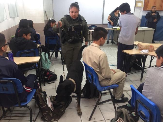 Apoya Unidad Canina operativos mochila SSPM
